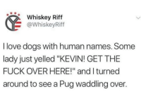 """Love Dogs: Whiskey Riff  @WhiskeyRiff  I love dogs with human names. Some  lady just yelled """"KEVIN! GET THE  FUCK OVER HERE!"""" and I turned  around to see a Pug waddling over."""