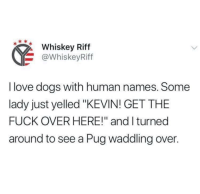 """Meirl: Whiskey Riff  @WhiskeyRiff  I love dogs with human names. Some  lady just yelled """"KEVIN! GET THE  FUCK OVER HERE!"""" and I turned  around to see a Pug waddling over. Meirl"""