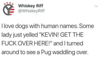 """oh my god: Whiskey Riff  @WhiskeyRiff  I love dogs with human names. Some  lady just yelled """"KEVIN! GET THE  FUCK OVER HERE!"""" and I turned  around to see a Pug waddling over. oh my god"""