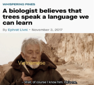 The trees by Drolmech MORE MEMES: WHISPERING PINES  A biologist believes that  trees speak a language we  can learn  By Ephrat Livni November 3, 2017  Vietnamese  Well, of course I know him. He's me The trees by Drolmech MORE MEMES