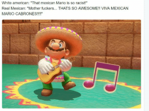 """Shit, Mario, and American: White american: """"That mexican Mario is so racist!""""  Real Mexican: """"Mother fuckers... THATS SO AWESOME!! VIVA MEXICAN  MARIO CABRONES!!!!"""" Better Mario be Mexican than Waluigi or some shit"""