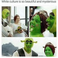 <p>Shrek is life (via /r/BlackPeopleTwitter)</p>: White culture is so beautiful and mysterious <p>Shrek is life (via /r/BlackPeopleTwitter)</p>