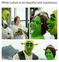 Beautiful, Memes, and White: White culture is so beautiful and mysterious Oh my goodness. 🤨🤔