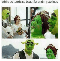 Beautiful, Wow, and White: White culture is so beautiful and mysterious Wow