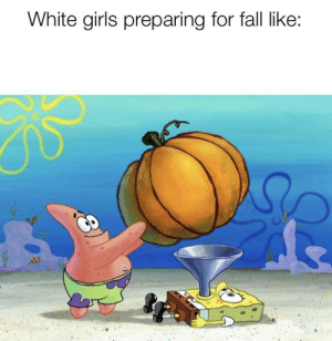 It's almost pumpkin spice season, my dudes: White girls preparing for fall like: It's almost pumpkin spice season, my dudes