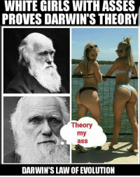 ohmybushes: WHITE GIRLS WITH ASSES  PROVES DARWIN'S THEORY  Theory  my  asS  DARWIN'S LAWOFEVOLUTION ohmybushes