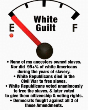 WHITE GUILT!!!!11!!: White  Guilt  None of my ancestors owned slaves.  Nor did 95+% of white Americans  during the years of slavery.  White Republicans died in the  Civil War to free slaves.  White Republicans voted unanimously  to free the slaves, & later voted  to give them citizenship & voting rights.  Democrats fought against all 3 of  these Amendments.  LL WHITE GUILT!!!!11!!