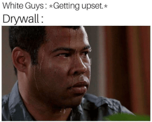 When you're not a verified submitter by _will_sex_for_food MORE MEMES: White Guys Getting upset.*  Drywall: When you're not a verified submitter by _will_sex_for_food MORE MEMES