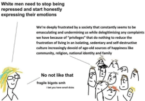 """And this is why western culture is f*cked. Leftism is cancer.: White men need to stop being  repressed and start honestly  expressing their emotions  We're deeply frustrated by a society that constantly seems to be  emasculating and undermining us while delegitimising any complaints  we have because of """"privileges"""" that do nothing to reduce the  frustration of living in an isolating, sedentary and self-destructive  culture increasingly devoid of age-old sources of happiness like  community, religion, national identity and family  No not like that  fragile bigots smh  i bet you have small dicks And this is why western culture is f*cked. Leftism is cancer."""