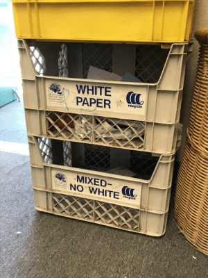 San Jose, United, and White: WHITE (  PAP  recycle  onserva  N WHITE  San Jose  ons  Corps  recycle Segregation in the United States (1960)