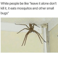 "Being Alone, Be Like, and Memes: White people be like ""leave it alone don't  kill it, it eats mosquitos and other small  bugs"" How ya'll doing"