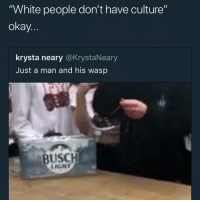 """Memes, White People, and Taxes: White people don't have culture""""  okay  krysta neary @KrystaNeary  Just a man and his wasp  BUSCH In Mexico, artist can pay their taxes with artwork"""