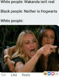 "Dank, Meme, and Savage: White people: Wakanda isn't real  Black people: Neither is Hogwarts  White people:  16h Like Reply  39 <p>Savage! via /r/dank_meme <a href=""http://ift.tt/2GO1jM6"">http://ift.tt/2GO1jM6</a></p>"