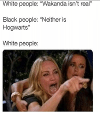 """Memes, White People, and Black: White people: """"Wakanda isn't real""""  Black people: """"Neither is  Hogwarts""""  White people:"""