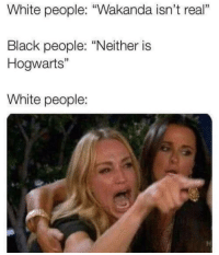"White People, Black, and White: White people: ""Wakanda isn't real""  Black people: ""Neither is  Hogwarts""  1  White people:"