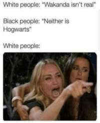 """White People, Black, and White: White people: """"Wakanda isn't real  Black people: """"Neither is  Hogwarts""""  White people:"""
