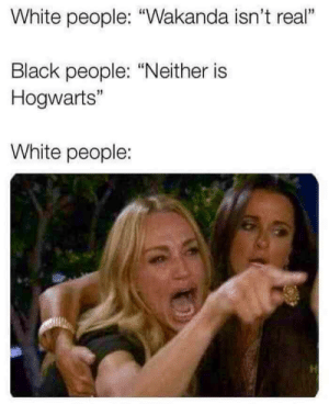 """White People, Black, and White: White people: """"Wakanda isn't real""""  Black people: """"Neither is  Hogwarts""""  13  White people: hogwarts isn't real"""