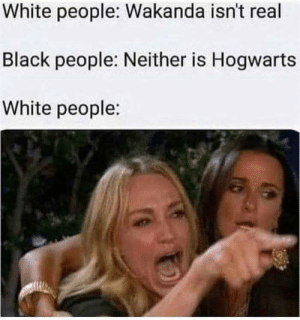 White People, Black, and White: White people: Wakanda isn't real  Black people: Neither is Hogwarts  White people: In ma feels
