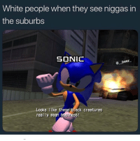 Funny, White People, and Black: White people when they see niggas in  the suburbs  SONIC  beez  Looks like these black creatures  real ly mean busiress Got 8 hour lecture save me