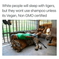 White people will sleep with tigers,  but they wont use shampoo unless  its Vegan, Non GMO certified  Toasty. Memes White people⁉️⁉️ • Follow➡️➡️ @toasty.memes