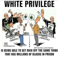 White Privilege: WHITE PRIVILEGE  UCE  LAT  @THEREALREYREDD  IS BEING ABLE TO GET RICH OFF THE SAME THING  THAT HAS MILLIONS OF BLACKS IN PRISON