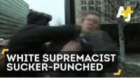 This white supremacist was sucker-punched at an anti-Trump protest.: WHITE SUPREMACIST  SUCKER-PUNCHED This white supremacist was sucker-punched at an anti-Trump protest.