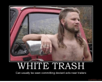 Trash, White, and White Trash: WHITE TRASH  Can usually be seen committing deviant acts near trailers  motifake.com <p>Now you know where to look…</p>