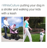 Funny, Kids, and Dog:  #WhiteCulture putting your dog in  a stroller and walking your kids  with a leash If you @masturbate follow @masturbate 🔞