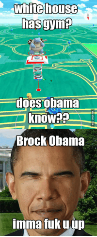 brock obama: Whitehouse  has gynna  does obama  Brock Obama  Imma tuk u up