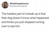 https://t.co/DnL0S1UxLQ: WhitePeopleHumor  @whitememejesus  The hardest part of a break up is that  their dog doesn't know what happened  and thinks you just stopped coming  over to see him https://t.co/DnL0S1UxLQ