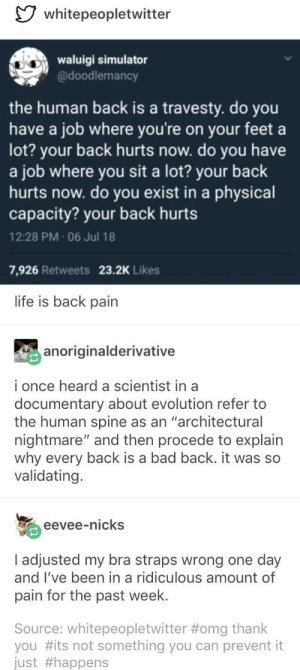 "Bad, Life, and Omg: whitepeopletwitter  aigi simulator  @doodlemancy  the human back is a travesty. do you  have a job where you're on your feet a  lot? your back hurts now. do you have  a job where you sit a lot? your back  hurts now. do you exist in a physical  capacity? your back hurts  12:28 PM 06 Jul 18  7,926 Retweets 23.2K Likes  life is back pain  anoriginalderivative  i once heard a scientist in a  documentary about evolution refer to  the human spine as an ""architectural  nightmare"" and then procede to explain  why every back is a bad back. it was so  validating.  eevee-nicks  I adjusted my bra straps wrong one day  and l've been in a ridiculous amount of  pain for the past week  Source: whitepeopletwitter #omg thank  you #its not something you can prevent it  Just It's ok, back pain is normal"