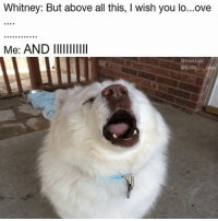 Memes, Bear, and 🤖: Whitney: But above all this, l wish you lo...ove  Me: AND lllllllllll  abarkbox When Whitney comes on & you just go for it @koda____bear