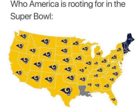 America, Super Bowl, and Bowl: Who America is rooting for in the  Super Bowl: Do y'all think this is accurate? 🏈🤔 https://t.co/dSh9maeetD