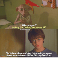 When we first meet Dobby! If you could pick one character to bring back to life, who would it be?: Who are you?  Dobby, Sir Dobby the House Elf  @SLUGHORNS IG  Not tobende oranything, but nowisnotagreat  time formeto haveaHouse Elfin mybedroom. When we first meet Dobby! If you could pick one character to bring back to life, who would it be?