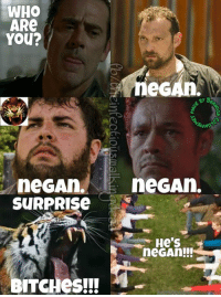 Get em Shiva. Get them. They're Negan. #Negan: WHO  ARe  You?  eGAn  neGAn  neGAn  SURPRISe  N  He S  neGAn!!!  BITCHes!!! Get em Shiva. Get them. They're Negan. #Negan