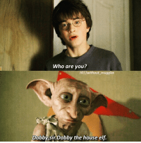 Elf, Memes, and 🤖: Who are you?  out muggles  Dobby,sir Dobby the house elf 's new edit! Ty 32 K😁🙏💕💗❤💛😇 'Excuse me,who are you?' 'Dobby,sir.Dobby the house elf'. -^-♡-^- Hello guys! I'm back with a new edit for all of you. I will choose the winner from my GiveAway after 2 days so keep an eye opened,you have the chance to be the winner😉 Okay so each person has a number.If you entered first my GiveAway,you have nr 1,if you entered 2 nd,you have nr 2,etc Anyway I will announce the winner after 2 days,remember this if you are in ^^ After I finish this GiveAway I will take a break bc in this holiday that will start next week want to finish my book to can publish it🙏 ... [@lestranged @weasleydaughter @wweasleystwins @all_about_harry_potter_ @thisishermione @_riddikulus.fangirl_ ] ... Q : Put a '🍭' in a comm if you want to be taggedd in my new edit(only the first 3) Q2 : Put a '⚡' in a comm if you love Dobby ... dobby without_muggles like4like always hp harrypottersceneedits