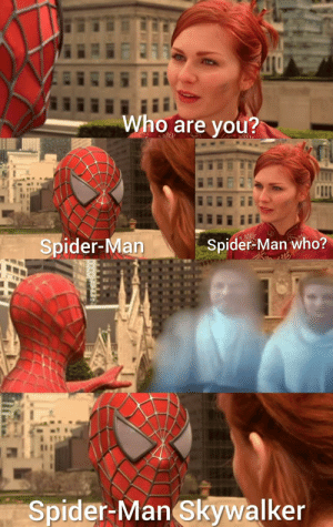Cross-over meme: Who are you?  Spider-Man  Spider-Man who?  Spider-Man Skywalker Cross-over meme