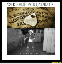 "Ya Boy: WHO ARE YOU SPIRIT?  23  it's Ya Boy! GUZMA!""  ifunny.CO"