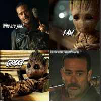 Aw baby groot so cute thewalkingdead: Who are you?  THERICKyGRIMESHORRORVIXENT01 Aw baby groot so cute thewalkingdead
