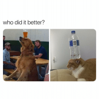 Memes, 🤖, and Cat: who did it better? all cat votes getting blocked for the next 10 mins