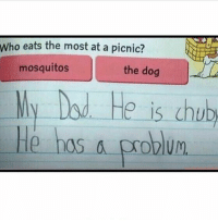 🤣😂😂😂: Who eats the most at a picnic?  mosquitos  the dog  d. Ho is chub  He has a problu 🤣😂😂😂