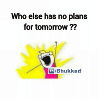 ✋: Who else has no plans  for tomorrow  fb IBhukkad ✋