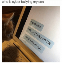 this always gets me: who is cyber bullying my son  henlo kittin  ello u STINKY ouse  KITTIN this always gets me