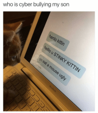 😂 Not again | More 👉 @miinute: who is cyber bullying my son  henlo kittin  hello u STINKY ouse  KITTIN 😂 Not again | More 👉 @miinute