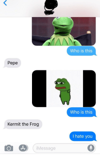 Kermit the Frog: Who is this  Pepe  Who is this  Kermit the Frog  I hate youu  Message