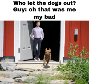 Who let the dogs out?: Who let the dogs out?  Guy: oh that was me  my bad Who let the dogs out?