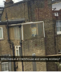 Who, Ecstasy, and Can: Who lives in a crackhouse and snorts ecstasy? I cant hear you !
