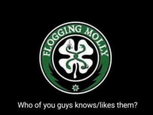 Flogging Molly: Who of you guys knows/likes them? Flogging Molly