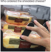 Memes, 🤖, and Cheese: Who ordered the shredded cheese?  42  MUENSTER  CHEESE  MUENSTER  CHEESE dudddeeee