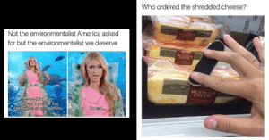 America, Friday, and Memes: Who ordered the shredded cheese?  Not the environmentalist America asked  for but the environmentalist we deserve  MUENSTER  CHEESE  me was tound ia the  of  stomachs sea turtles  So aud. 21 Funky Friday Memes For All The Hard Workers